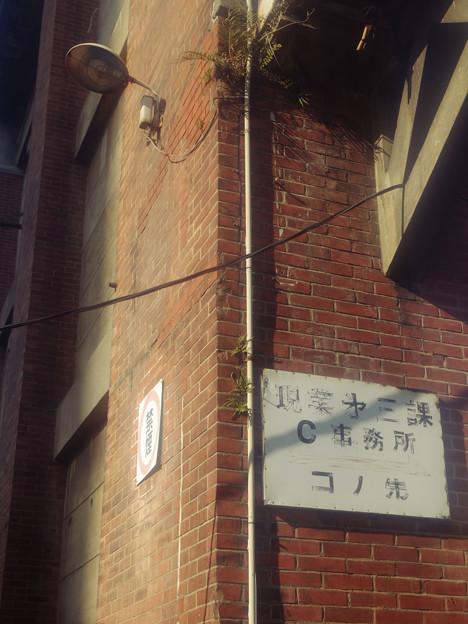 1913_C事務所
