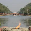 写真: 2356 釈迦の生誕地ルンビニ@ネパール