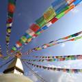 Photos: 2360 タルチョーはためく巨大仏塔@ネパール
