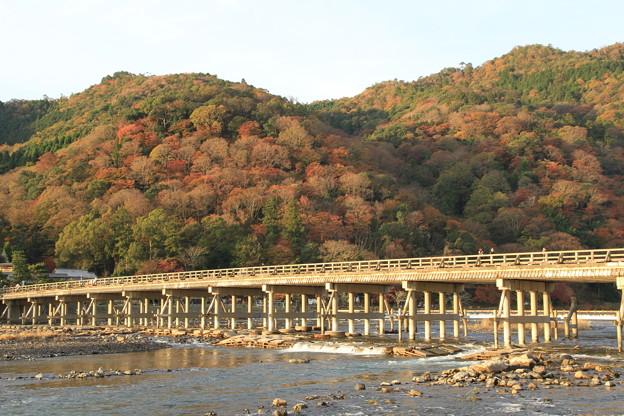 写真: 2381 冬はつとめて@京都