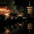 写真: 2394 そうだ 京都、行こう@京都
