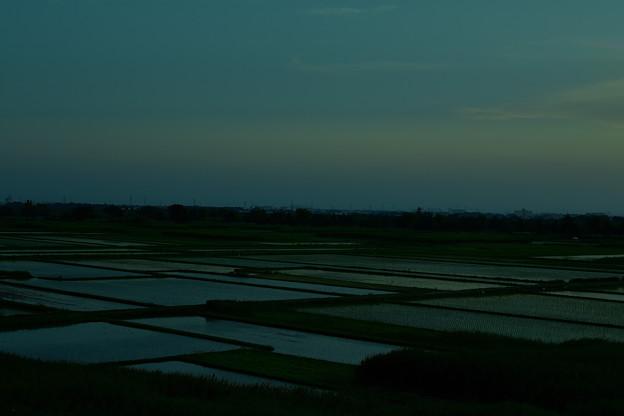 写真: 田園賛歌