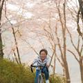 写真: 春の日差しの中で