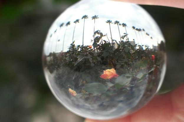 写真: クリスタルボール