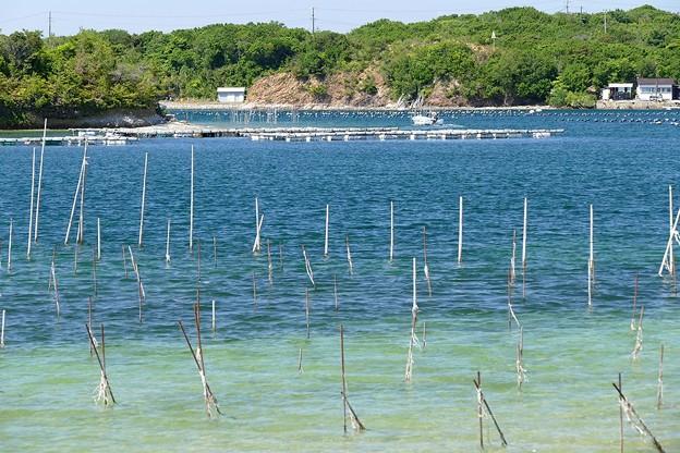 Photos: 次郎六郎海岸