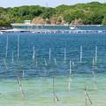 写真: 次郎六郎海岸