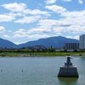 写真: 狭山池