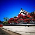 写真: 極楽寺