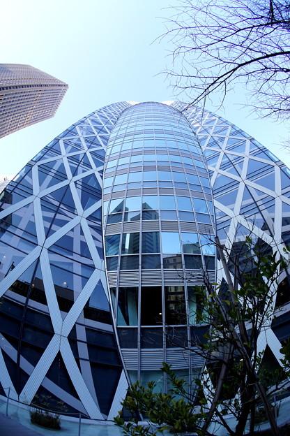 コクーンタワー 2
