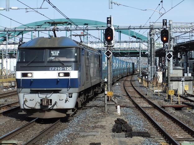 Photos: EF210-120+コキ【トヨタロングパスエクスプレス】