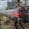 EF81 139+E26系カシオペア