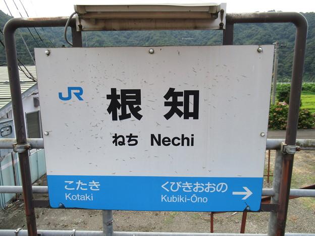 根知駅 駅名標【下り】