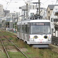 Photos: 世田谷線300系 308F【幸福の招き猫電車】