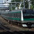 埼京線E233系7000番台 ハエ116編成