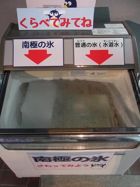 20170415 長崎ペンギン水族館 04