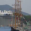Photos: 20170420 長崎帆船まつり 10