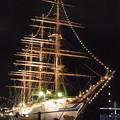 Photos: 20170420 長崎帆船まつり 夜の03