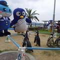 写真: 20170923 長崎ペンギン水族館10
