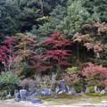 写真: 永興寺庭園