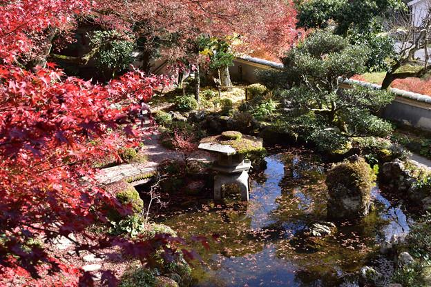 楽山荘庭園 2