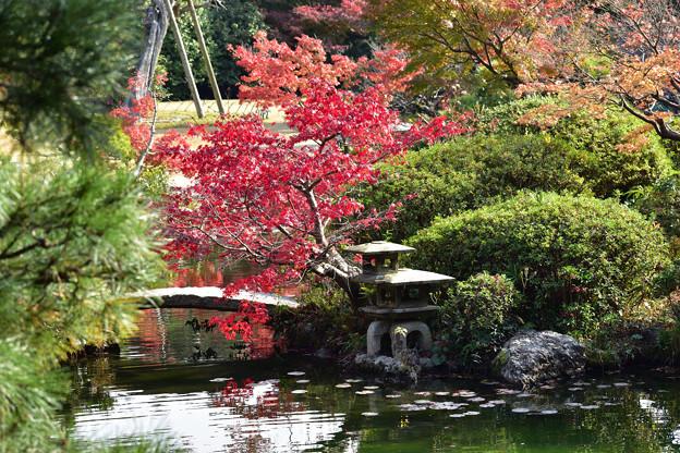 長府庭園紅葉 13