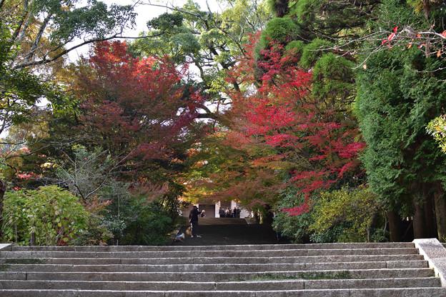 長府博物館への階段