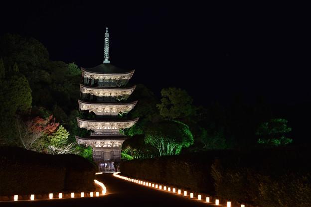 夜の五重塔 6