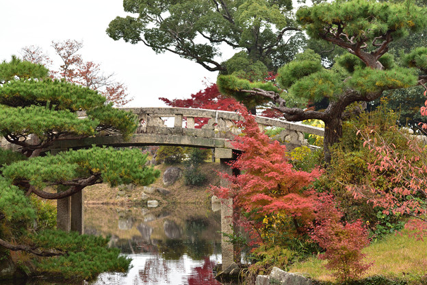 毛利氏庭園の紅葉 9
