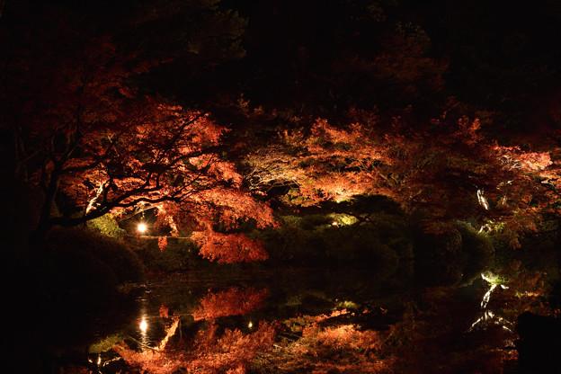 長府庭園 4