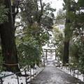 写真: 埴生護国八幡宮 2