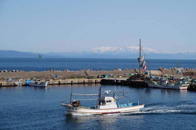 内浦の漁港 2