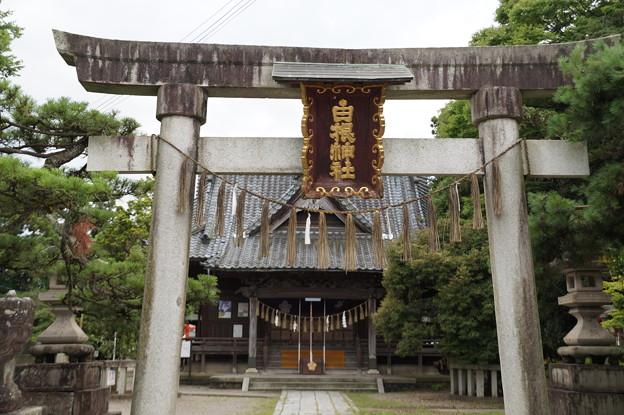 白根神社 2