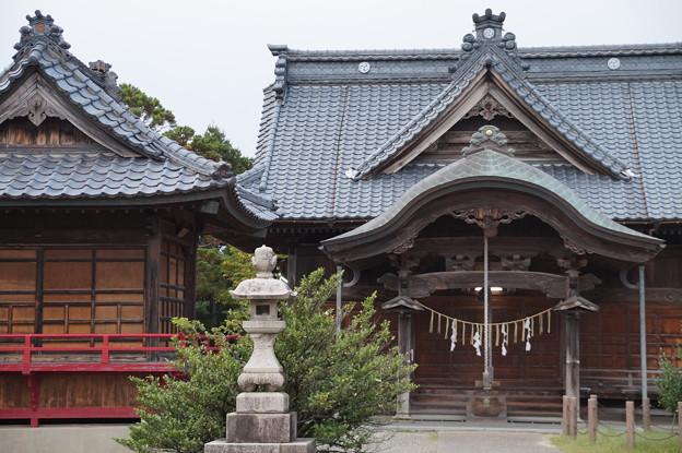 酒屋神社 2