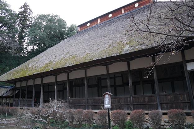 大雄寺 本堂