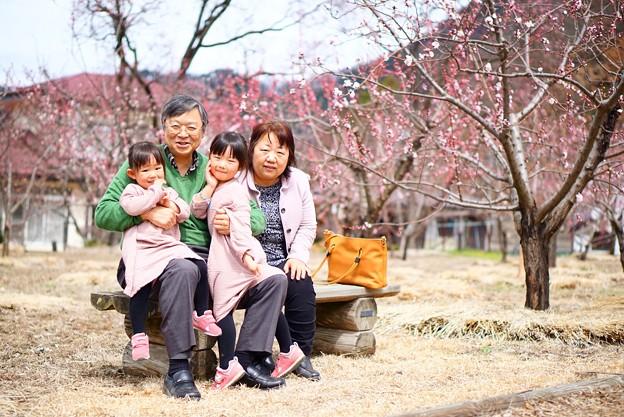 Photos: おじいちゃん、おばあちゃん大好き