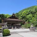 出雲大神宮・拝殿1