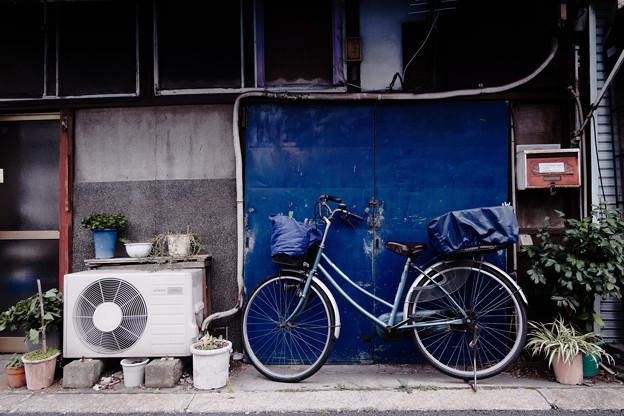 Photos: 青い扉