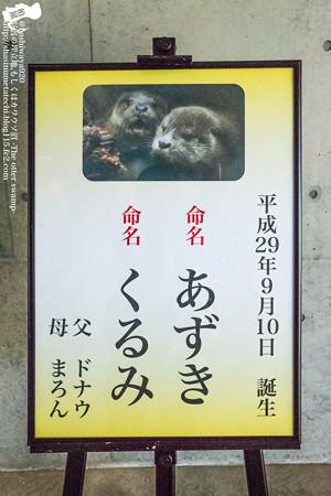 fukushima171218002