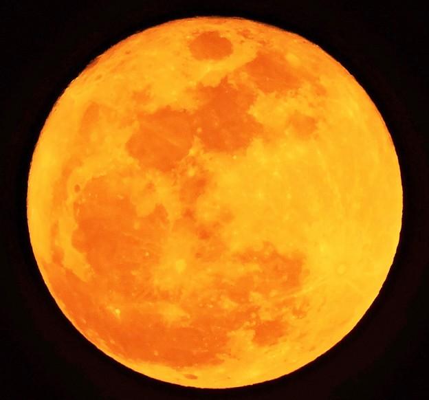 立春の満月(十六夜)・・1 02:04 (18:34)