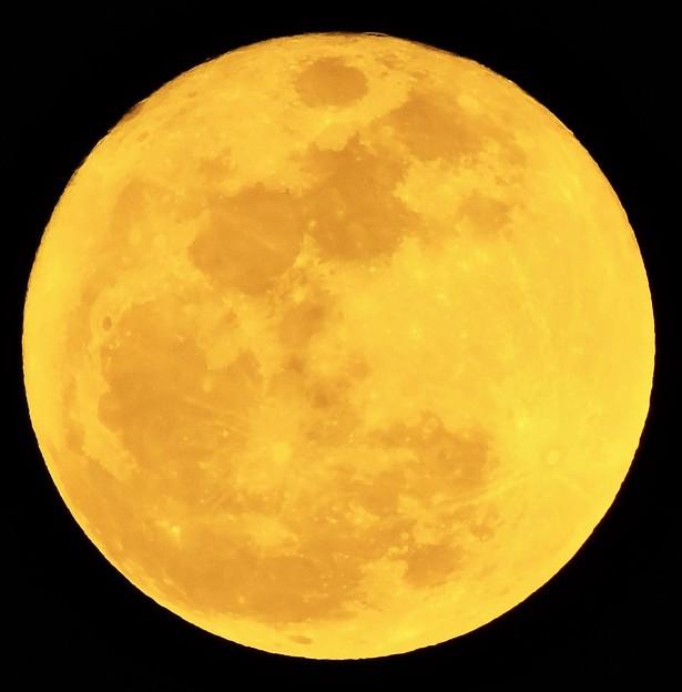 立春の満月(十六夜)・・2 02:04 (18:50)