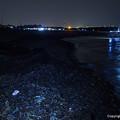 蓄積した河川ゴミ