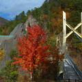 Photos: 吊橋前