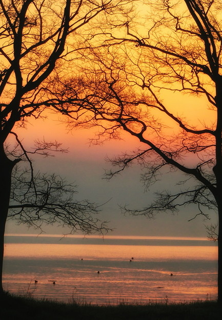 琵琶湖朝焼け