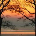 写真: 琵琶湖朝焼け
