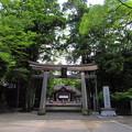 写真: 土佐神社
