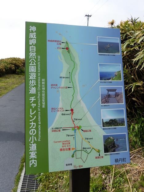 神威岬自然公園