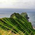 Photos: 神威岬