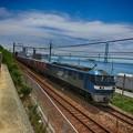 写真: 練習貨物列車