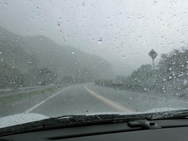 ブルーライン豪雨