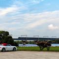 写真: 倉敷の瑞風